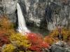 Patagonia Falls